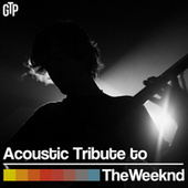 Play & Download Acoustic Tribute to The Weeknd by Guitar Tribute Players | Napster