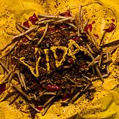 Self-Titled - EP by Vida