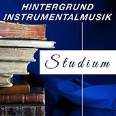 Hintergrund Instrumentalmusik für für das Studium und für die Konzentration by Various Artists