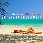 Play & Download Entspannungsmusik: Musik zum Entspannen by Various Artists | Napster