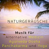 Play & Download Naturgeräusche - Musik für Alternative Medizin, Ayurveda, Dosha, Panchakarma und Yoga by Various Artists | Napster