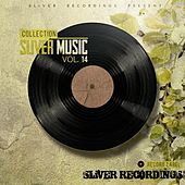Play & Download SLiVER Music Collection, Vol.14 - EP by Various Artists | Napster
