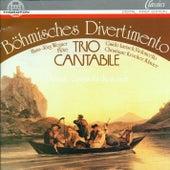 Böhmisches Divertimento by Trio Cantabile