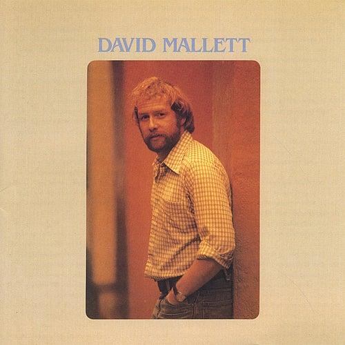 David Mallett by David Mallett