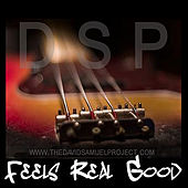 Feels Real Good by The David Samuel Project