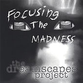 Focusing the Madness by The Dreamscapes Project