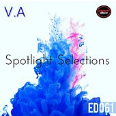 Play & Download Spotlight Selections by Various Artists | Napster