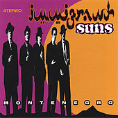 Play & Download Montenegro by Immigrant Suns | Napster