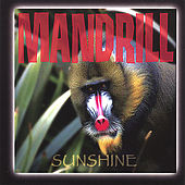 Play & Download Sunshine by Mandrill | Napster