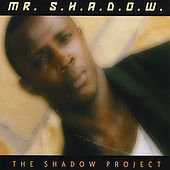 The Shadow Project by Mr. Shadow