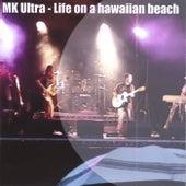 Life On a Hawaiian Beach by John Evans