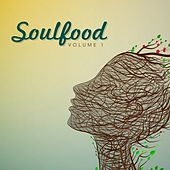 Soulfood, Vol. 1 by Various Artists