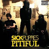 Play & Download Pitiful by Sick Puppies | Napster