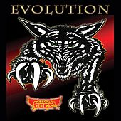 Play & Download Evolution by Wild Dogs | Napster