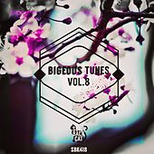 Play & Download Bigeous Tunes, Vol. 8 by Various Artists | Napster