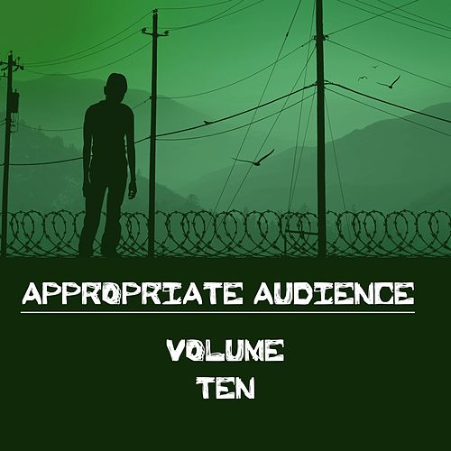 Appropriate Audience, Vol. 10 by Various Artists