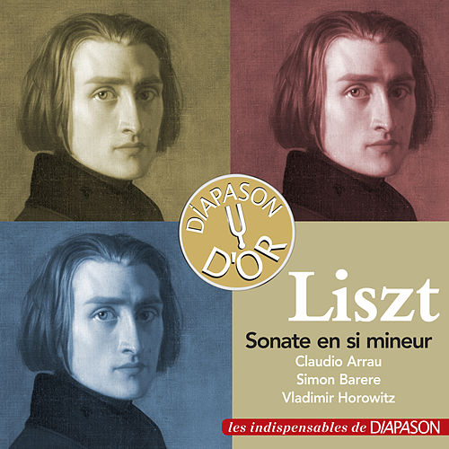 Play & Download Liszt: Sonate en Si Mineur (Les indispensables de Diapason) by Vladimir Horowitz | Napster