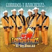 Play & Download Corridos Y Rancheras by Los Galleros de Michoacan | Napster