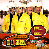 Play & Download El Patron De La Sierra by Los Alegres De La Sierra | Napster