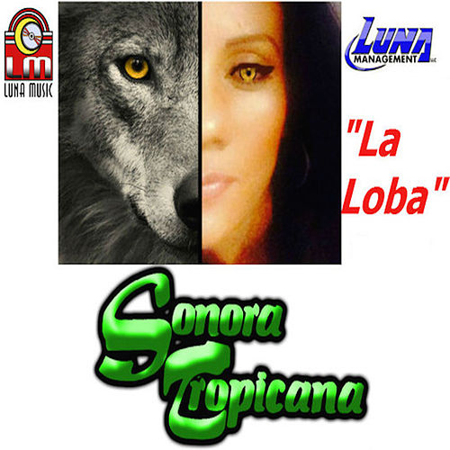 La Loba (Single) by Sonora Tropicana