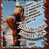 Trancazos Nortenos by Various Artists