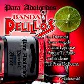 Play & Download Para Adoloridos by Banda Pelillos | Napster