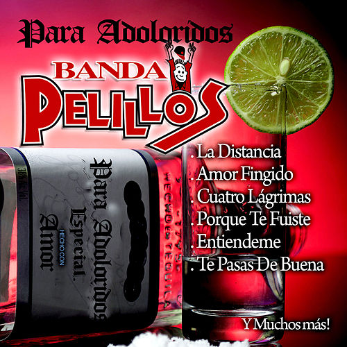 Play & Download Para Adoloridos by Banda Pelillos | Napster