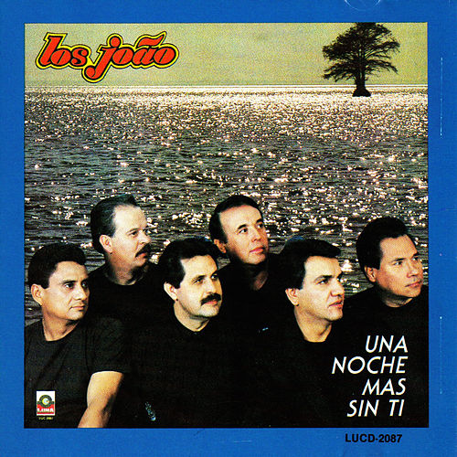 Play & Download Una Noche Mas Sin Ti by Los Joao | Napster