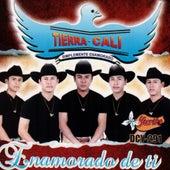 Play & Download Enamorado De Ti by Tierra Cali | Napster