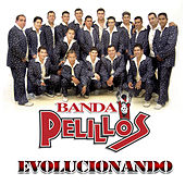 Play & Download Evolucionando by Banda Pelillos | Napster