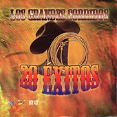Los Grandes Corridos 20 Exitos by Various Artists