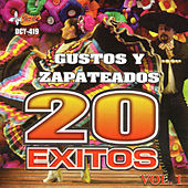 Gustos y Zapateados - 20 Exitos, Vol. 1 von Various Artists