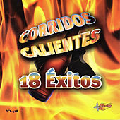 Play & Download Corridos Calientes 18 Exitos by Various Artists | Napster