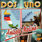 Play & Download Dos En Uno by Aniceto Molina | Napster