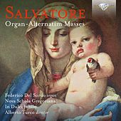 Play & Download Salvatore: Organ-Alternatim Masses by Nova Schola Gregoriana, In Dulci Jubilo, Federico del Sordo | Napster