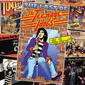 The Last Of The Teenage Idols von Various Artists