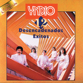 Play & Download 12 Desencadenados Exitos by Yndio | Napster