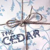 Play & Download I'm Always Explaining to Mum How It Is Different Here by Cedar | Napster