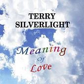 Play & Download Meaning of Love by Terry Silverlight | Napster