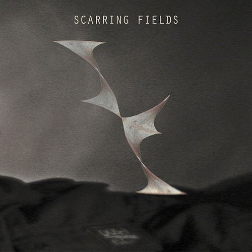 Play & Download Scarring Fields by Scarring Fields | Napster