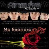 Me Enamore de Ti by Anexo Al Norte