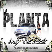 Play & Download La Planta by Kilate | Napster