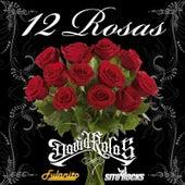 12 Rosas (feat. Fulanito & Sito Rocks) by David Rolas