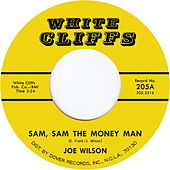 Sam Sam the Money Man by Joe Wilson