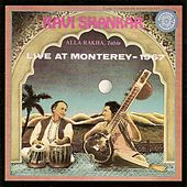 Play & Download Live at Monterey 1967 by Ravi Shankar | Napster