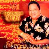 Play & Download El Rey Sabanero by Lisandro Meza | Napster