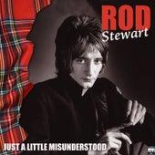 Just a Little Misunderstood von Rod Stewart