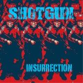 Insurrection by Shotgun