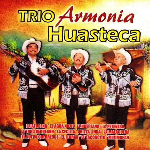 Play & Download Trio Armonia Huasteca by Trio Armonia Huasteca | Napster