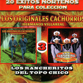 20 Exitos Nortenos Para Coleccion by Various Artists